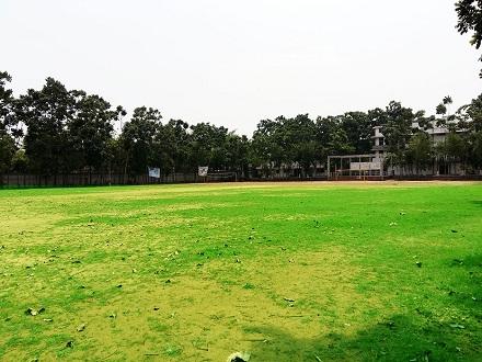 Greenfield playground